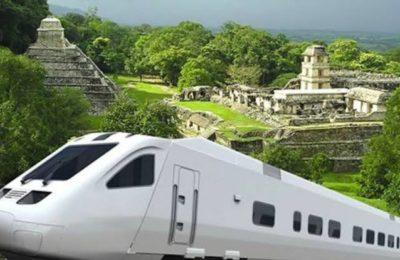 Tren Maya: el gobierno dio contratos antes de consultas
