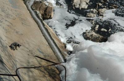 Guadalajara: Hershey's, Nestlé y Honda, entre las 29 empresas que contaminan el río Santiago