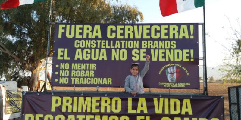 Baja California: Gobierno confirma cancelación de cervecera de Constellation Brands en Mexicali