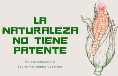 En Defensa del Campo y las Semillas, y en contra de la Reforma a la Ley Federal de Variedades Vegetales