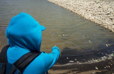 Oaxaca: Minería podría agudizar sequía en pleno pico de pandemia