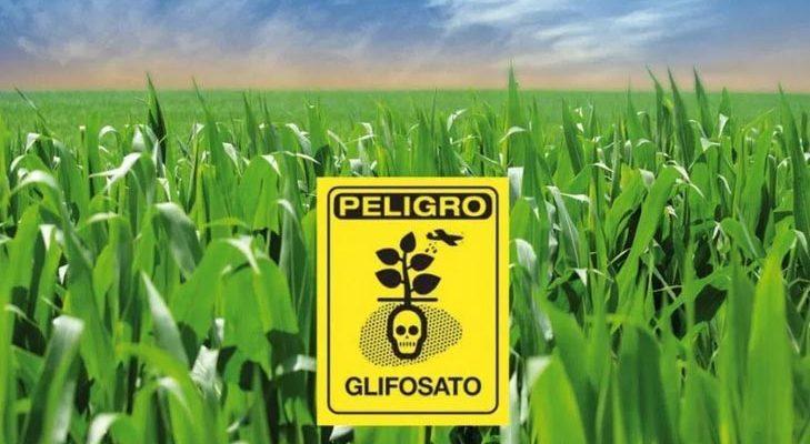 Apoyo a la negativa de la importación de Glifosato y  prohibición de su uso, junto con alternativas agroecologías y ampliación de derechos piden Organizaciones de la Sociedad Civil en México