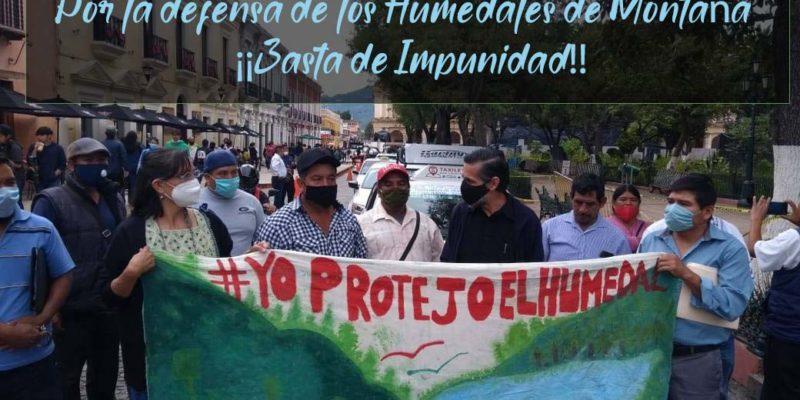 Por la Protección de los Humedales, ¡Basta de Impunidad!