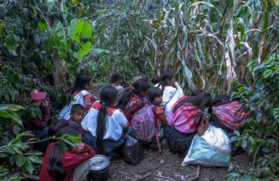 Chiapas: Acción Urgente: Agresión armada a brigada de ayuda humanitaria en Tabak, Aldama