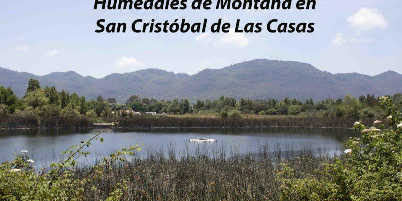 Video: Humedales de Montaña en San Cristóbal de Las Casas